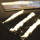 It's official: cocaine boosts sexual desire