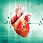 Cardiology and Heart Health - clinical information