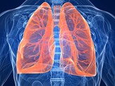 Fibre may help relieve asthma